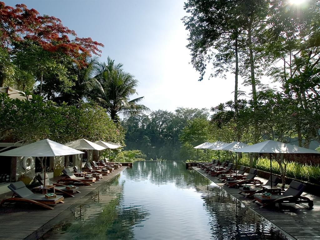 Туры в отель Maya Ubud Убуд Индонезия