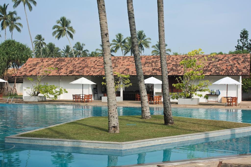 Туры в отель The Blue Water Ваддува Шри-Ланка