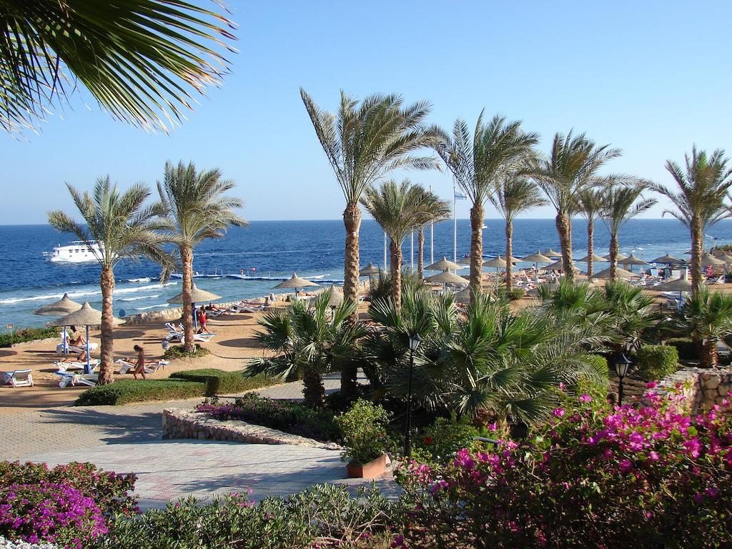 Veraclub Queen Sharm Египет цены