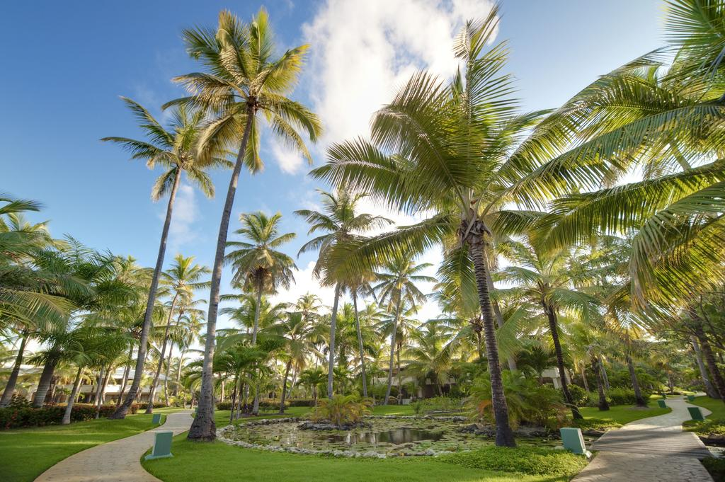 Melia Caribe Beach Resort (ex. Melia Caribe Tropical), Пунта-Кана, Домініканська республіка, фотографії турів