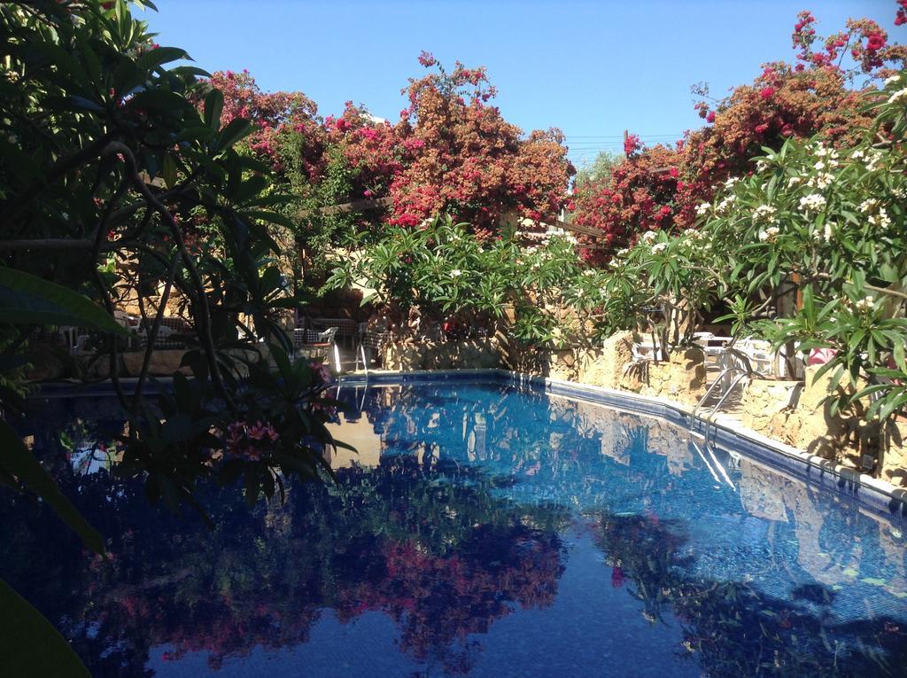 Roman Boutique Hotel, Кипр, Пафос, туры, фото и отзывы