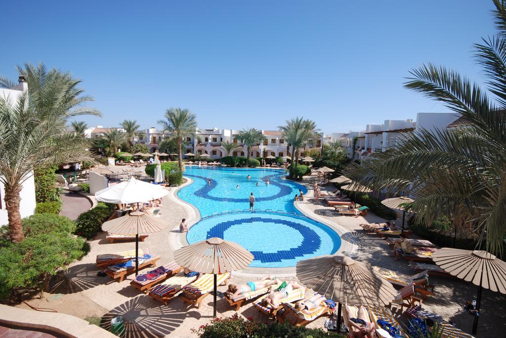 Dive Inn  Resort, Шарм-эль-Шейх цены
