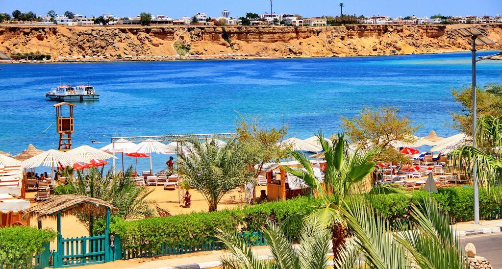 Туры в отель Turquoise Beach Hotel