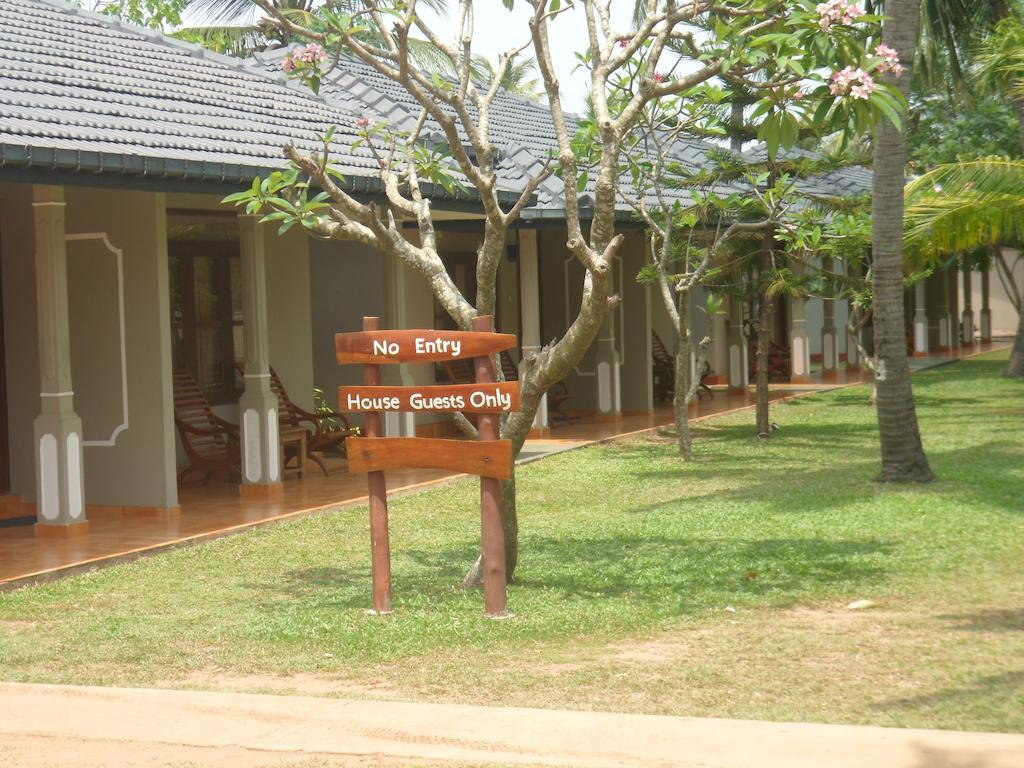 Отдых в отеле Carolina Beach Hotel Чилау Шри-Ланка