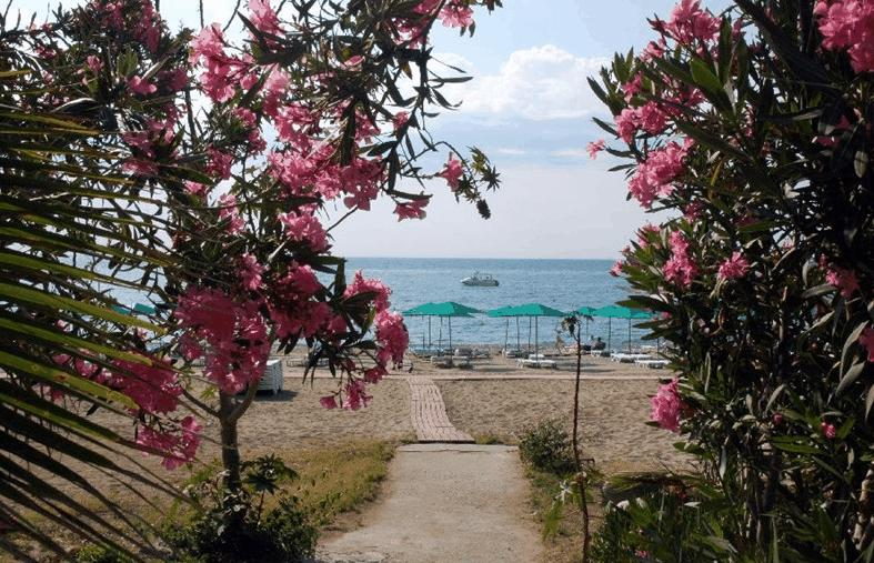 Горящие туры в отель Club Pinara Кемер Турция