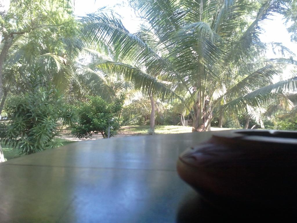 Lagoon Paradise Beach Resort Шри-Ланка цены
