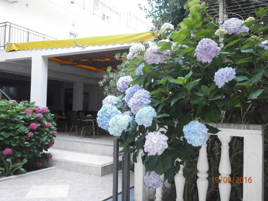 Черногория Hotel Suzana