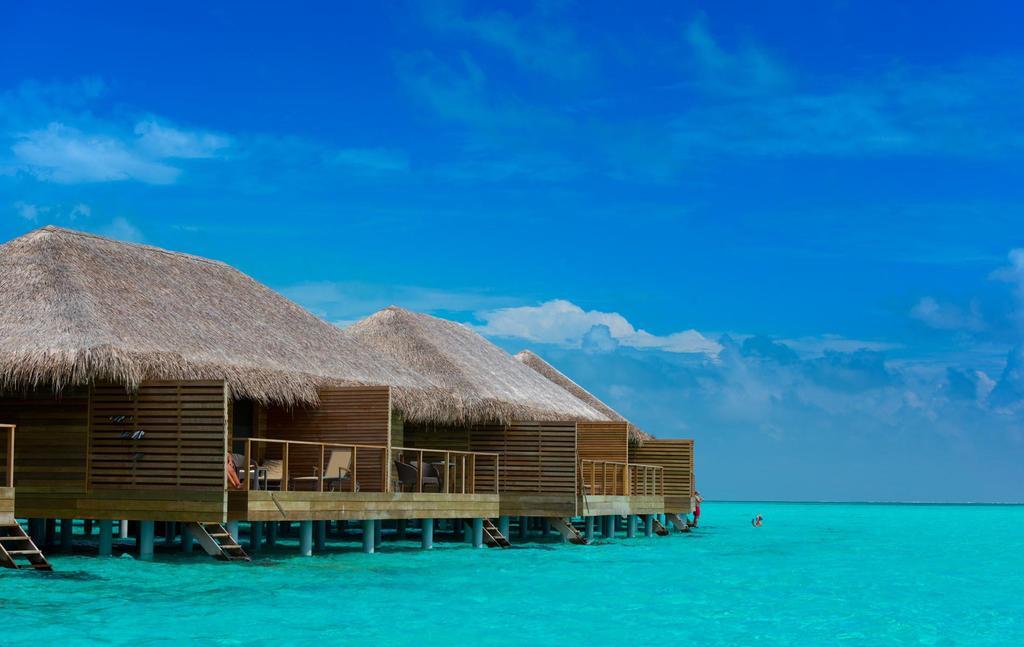 Фото готелю Cocoon Maldives