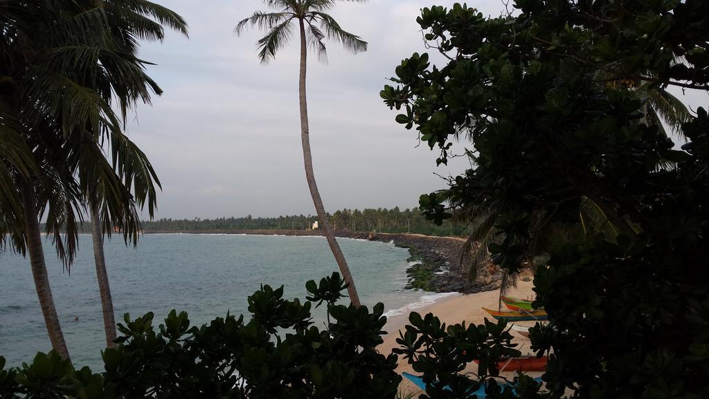 Туры в отель Cool Beach Hotel Хиккадува Шри-Ланка