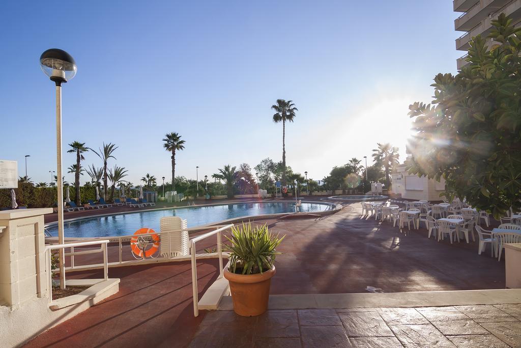 Отель, 3, Playas de Torrevieja