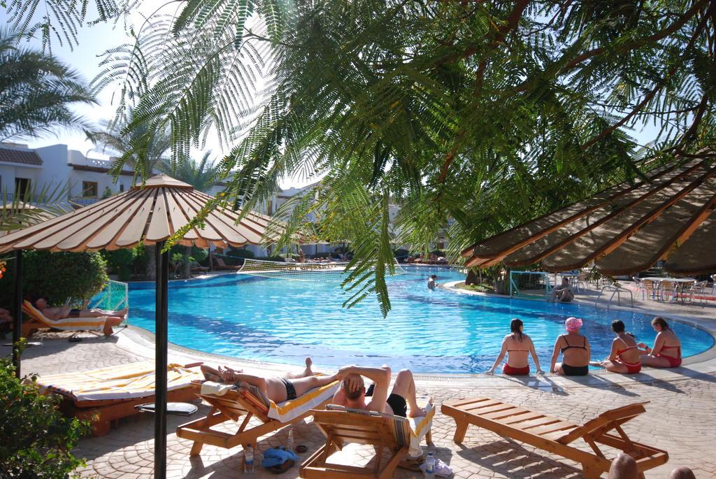 Dive Inn  Resort, Шарм-эль-Шейх, Египет, фотографии туров