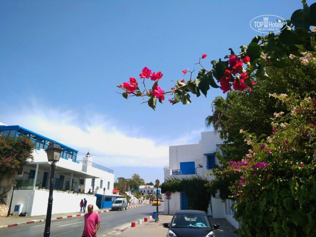 Горящие туры в отель El Mouradi Club Selima
