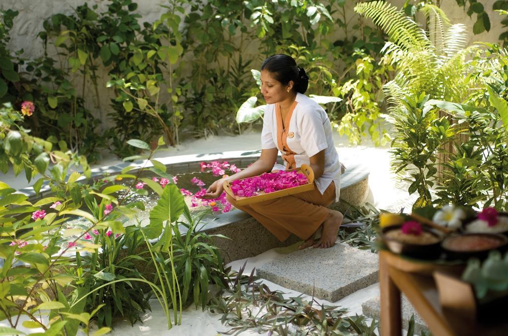 Горящие туры в отель Coco Palm Dhuni Kolhu Resort & Spa Баа Атолл Мальдивы