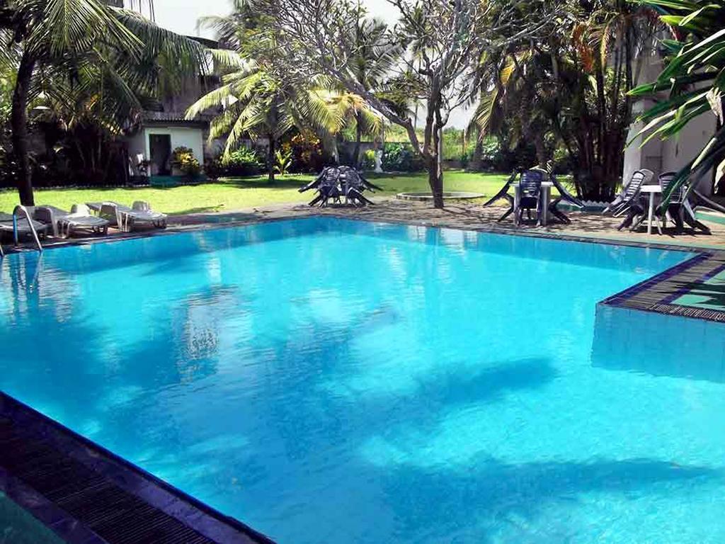 Горящие туры в отель The White Haven Hotel - Panadura (Budget) Ваддува
