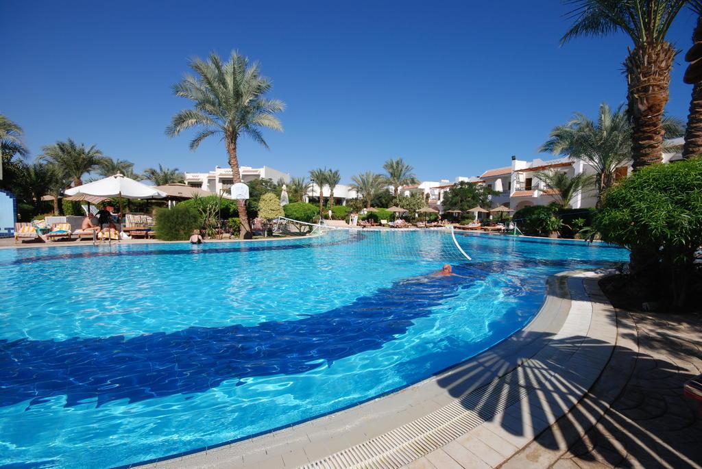 Dive Inn  Resort, Шарм-эль-Шейх, фотографии туров