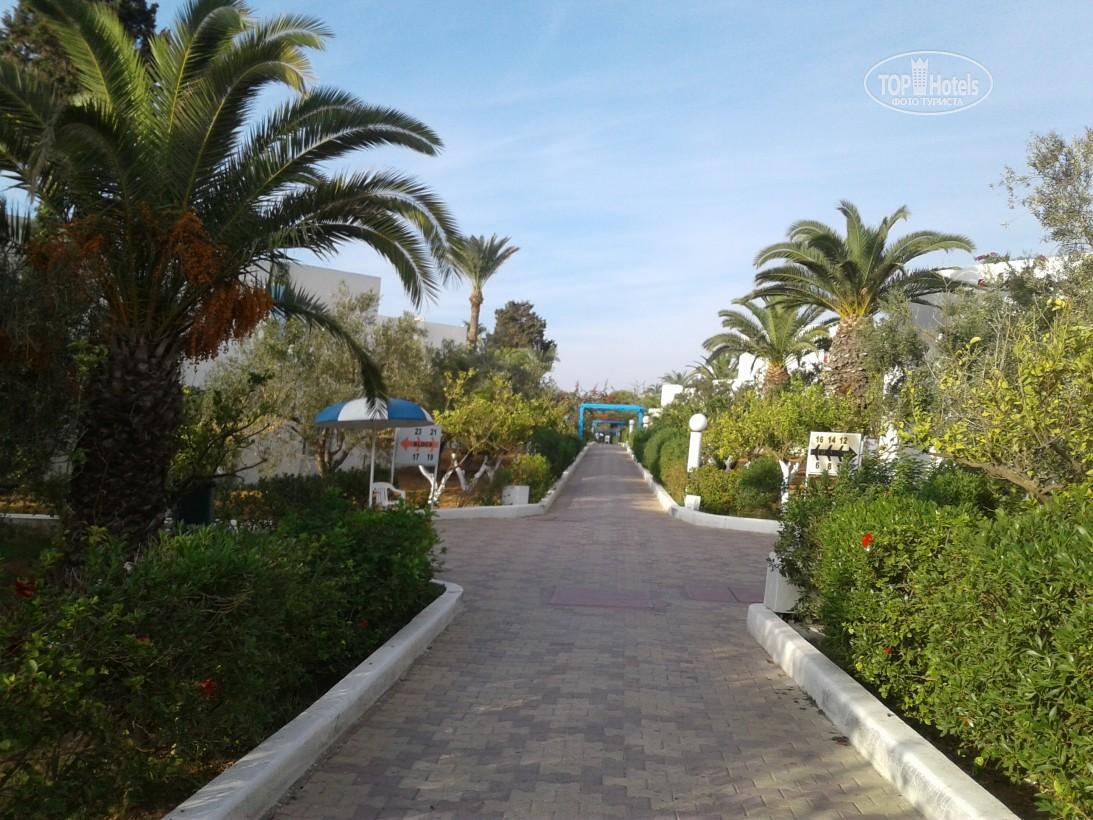 Отдых в отеле El Mouradi Club Selima
