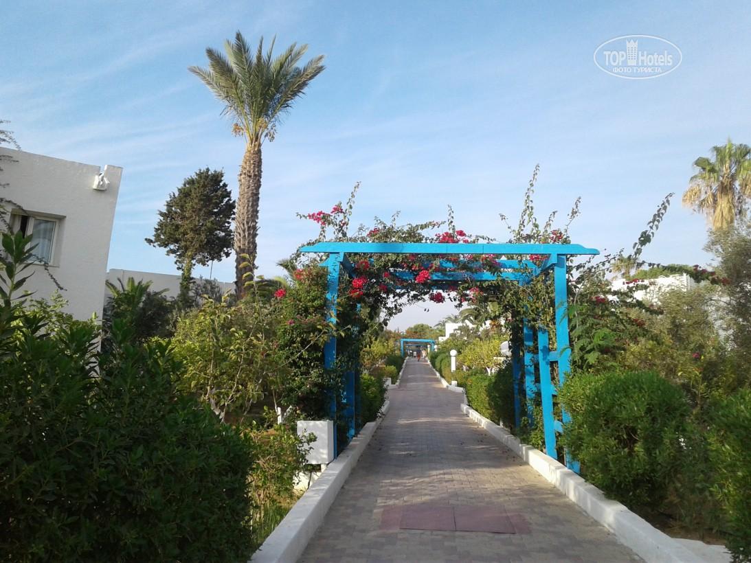 Туры в отель El Mouradi Club Selima