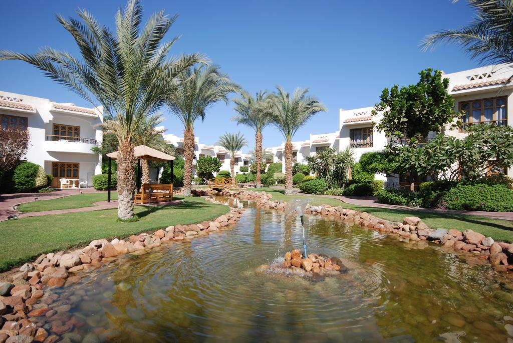 Горящие туры в отель Dive Inn  Resort Шарм-эль-Шейх