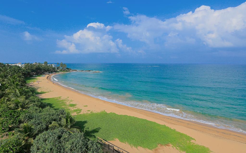 Цены в отеле Pandanus Beach Resort