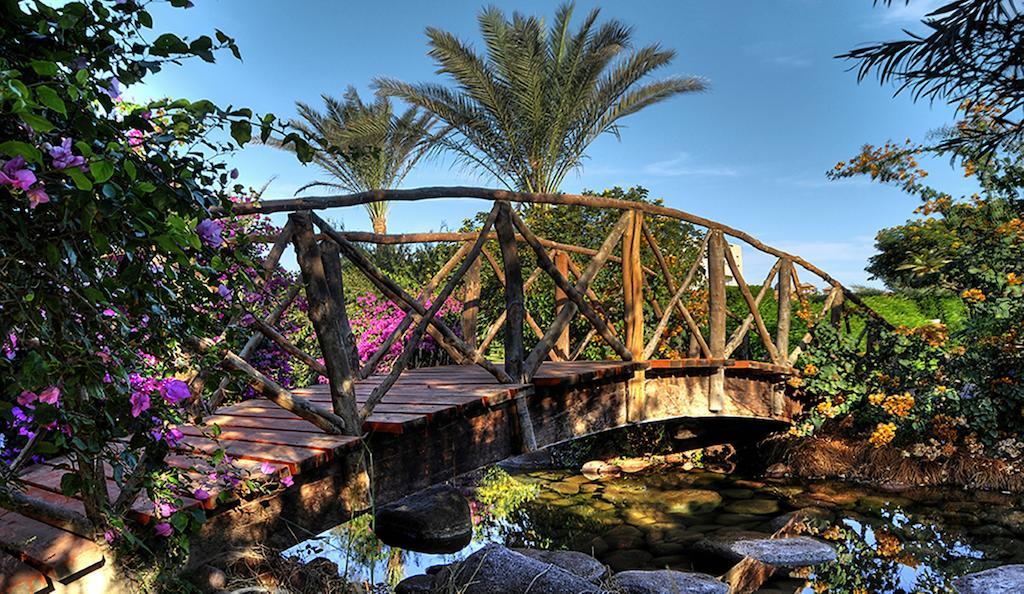 Гарячі тури в готель Aurora Oriental Resort (Ex. Oriental Resort) Шарм-ель-Шейх