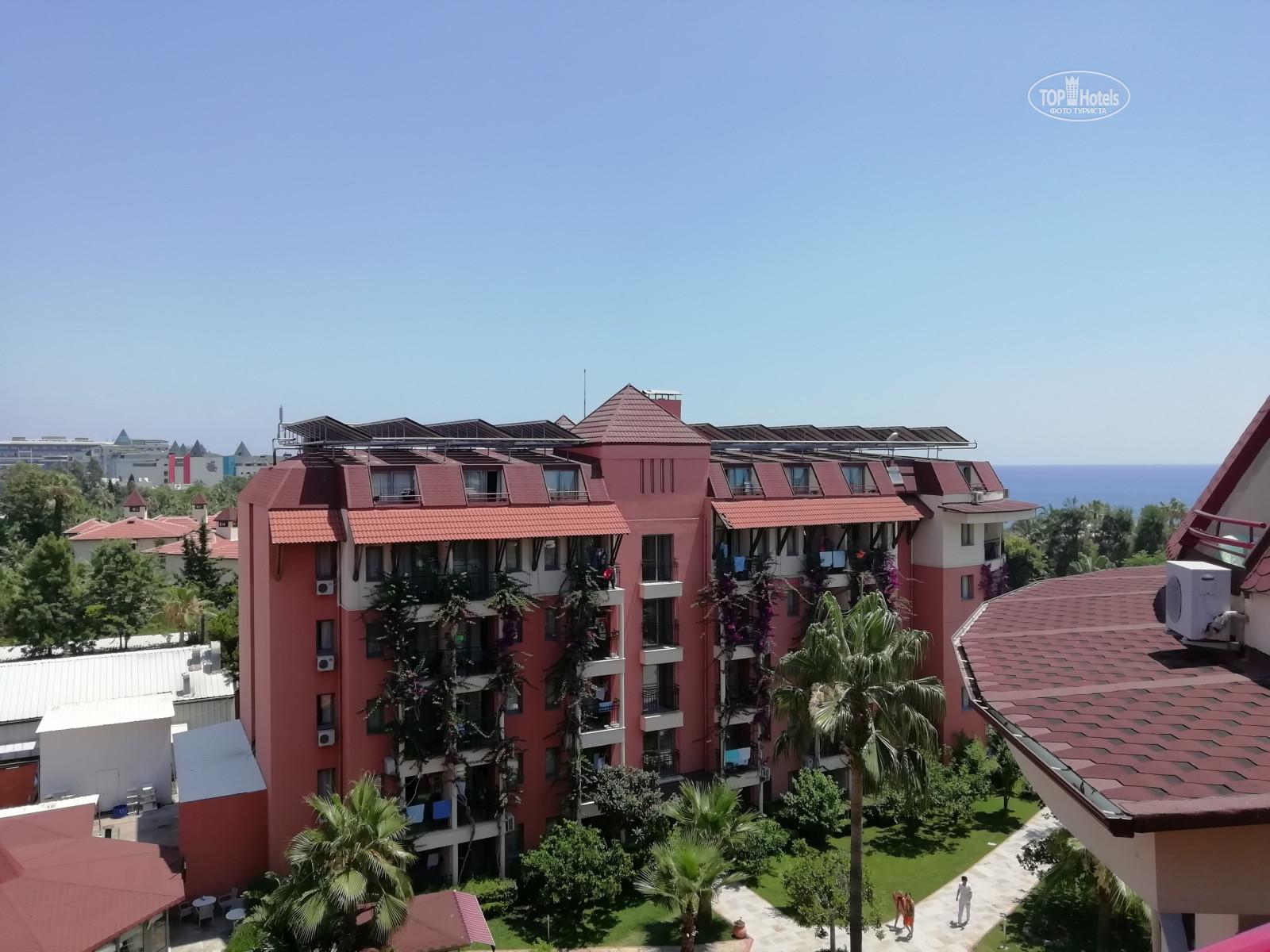 Palmeras Beach Hotel фото та відгуки