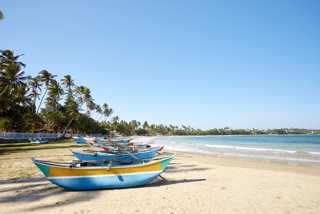 Dickwella Resort, Шрі-Ланка, Діквелла