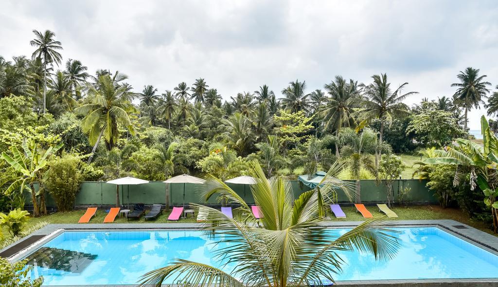 Bounty, Шри-Ланка, Амбалангода, туры, фото и отзывы