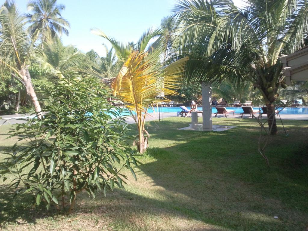Тангалле Lagoon Paradise Beach Resort цены