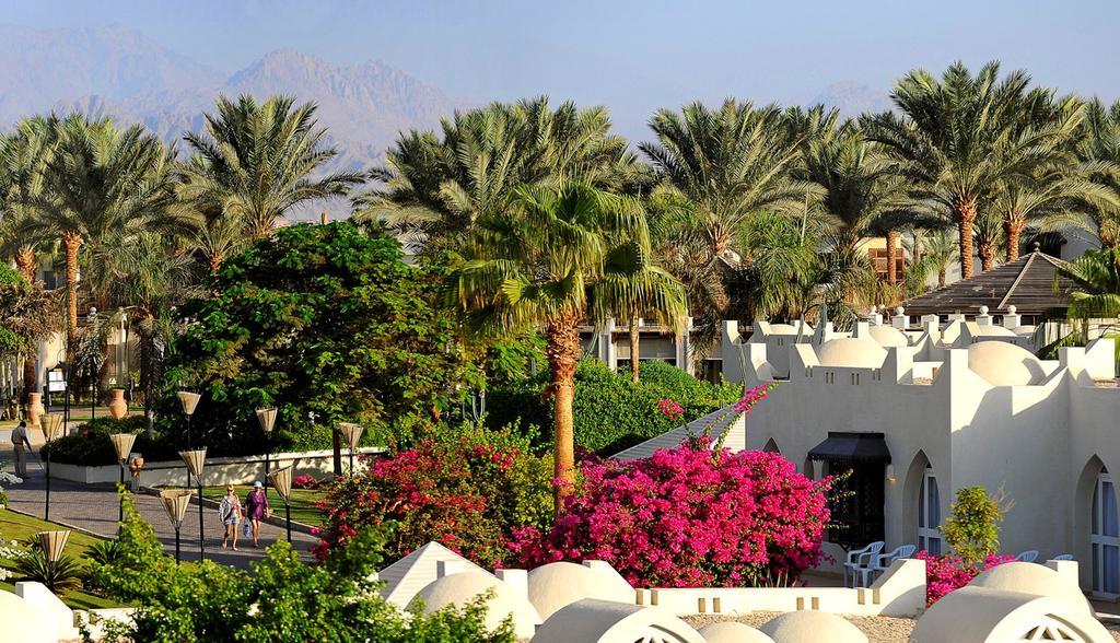 Горящие туры в отель Reef Oasis Beach Resort Шарм-эль-Шейх