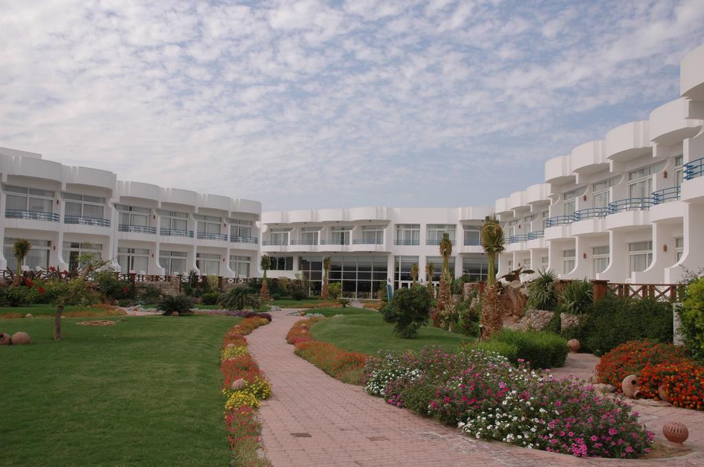 Горящие туры в отель Veraclub Queen Sharm