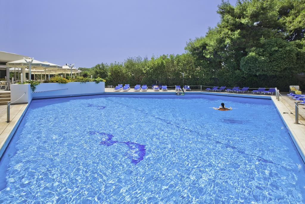Best Western Fenix Hotel, Афины цены