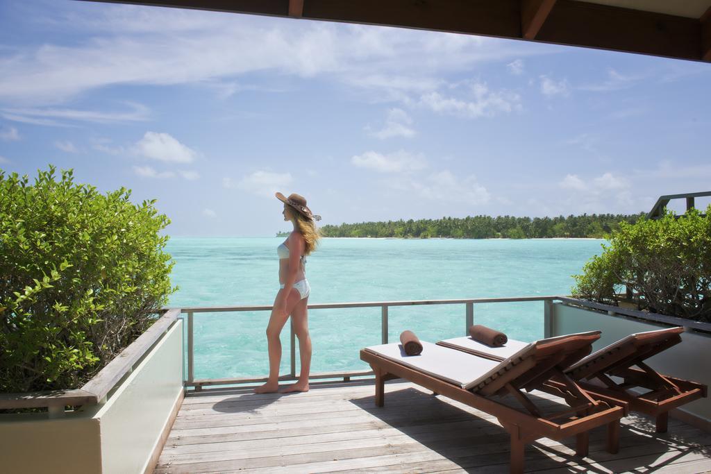 Туры в отель Sun Island Resort And Spa Ари & Расду Атоллы Мальдивы