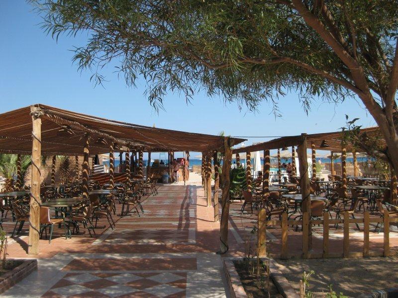 Туры в отель Shams Safaga Beach Resort Хургада Египет