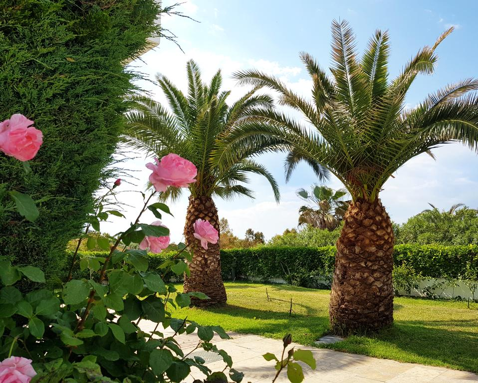 Відпочинок в готелі Alexandros Palace Hotel & Suites Афон
