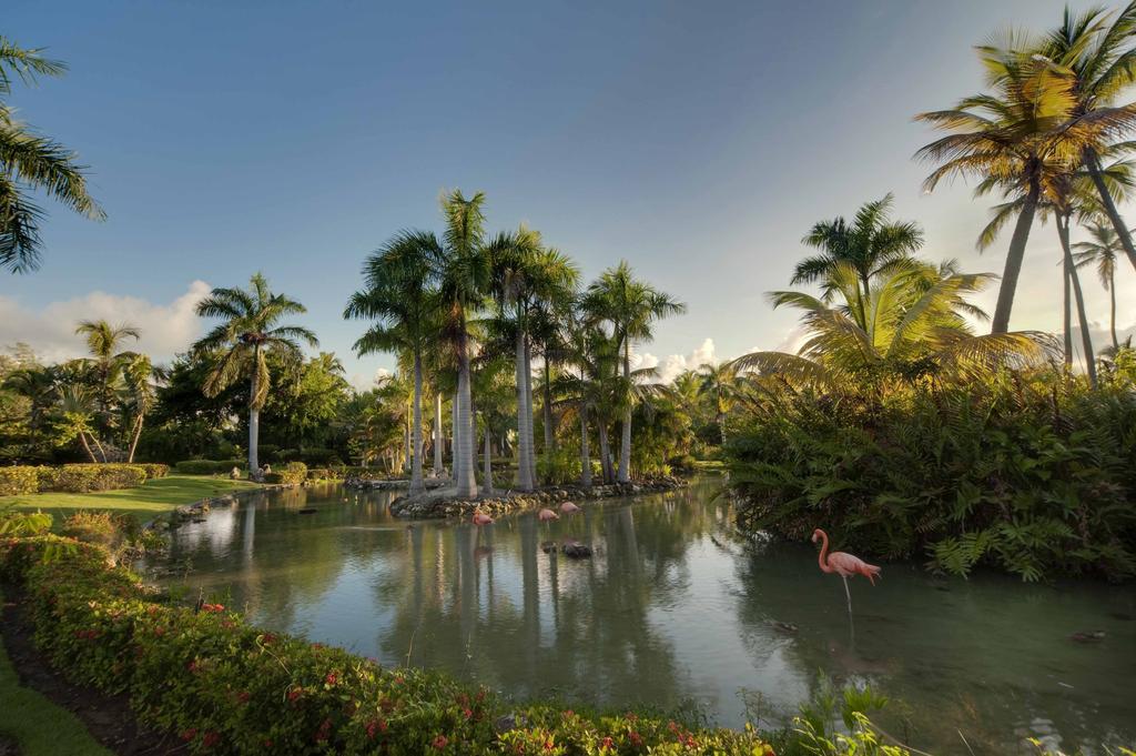 Melia Caribe Beach Resort (ex. Melia Caribe Tropical), Домініканська республіка