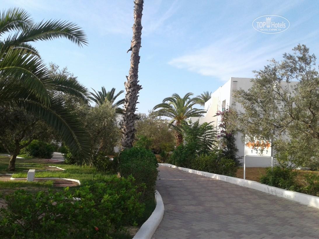 El Mouradi Club Selima, Порт Эль-Кантауи, фотографии туров