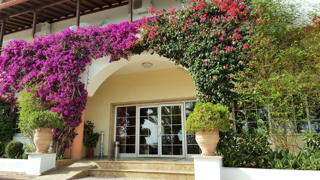 Alexandros Palace Hotel & Suites фото туристів