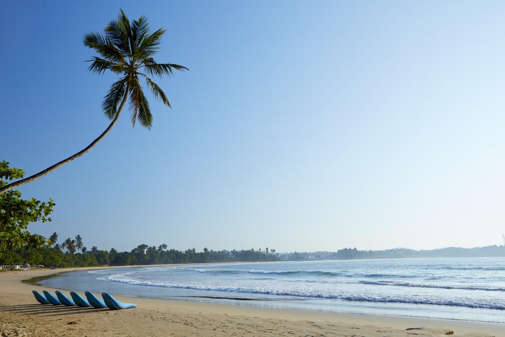 Готель, Діквелла, Шрі-Ланка, Dickwella Resort