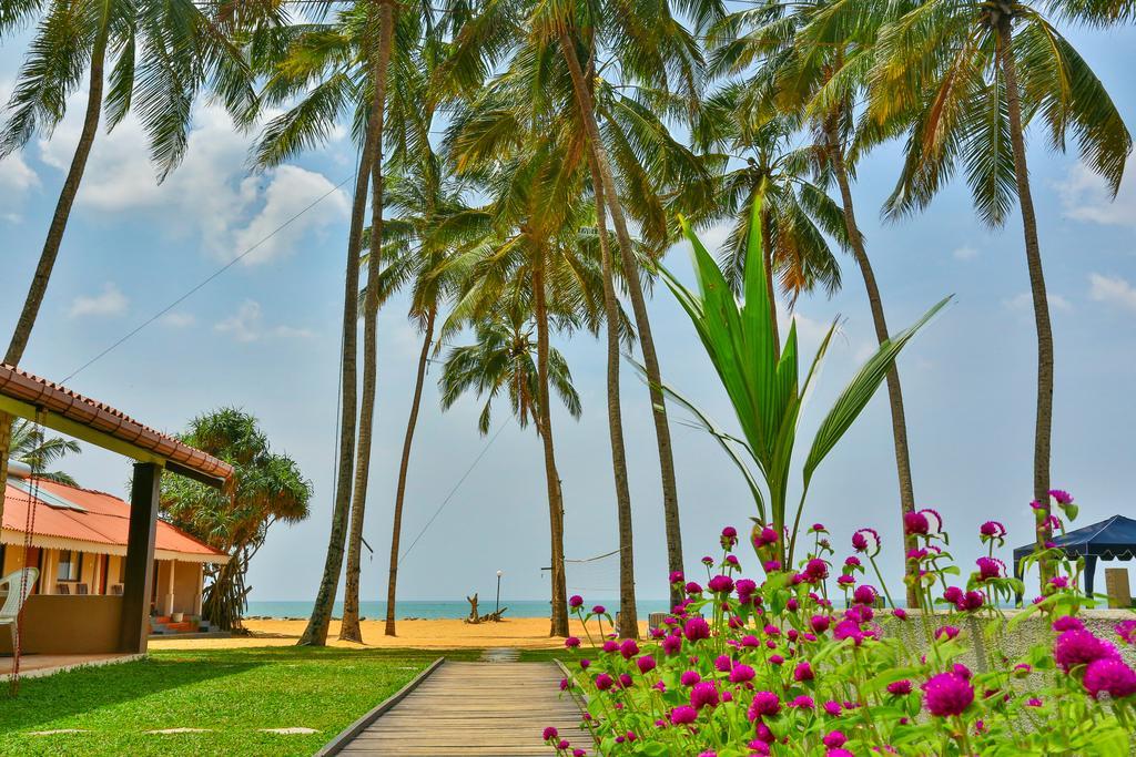 Горящие туры в отель Amagi Beach