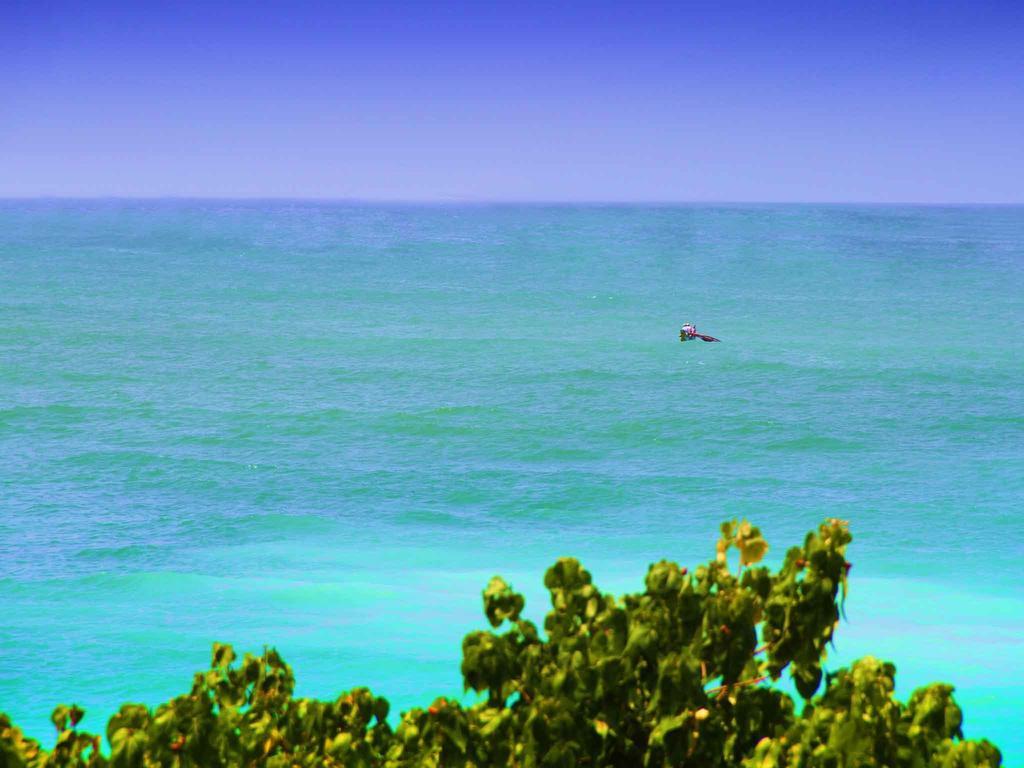 Горящие туры в отель Neptune Bey Hotel Унаватуна Шри-Ланка