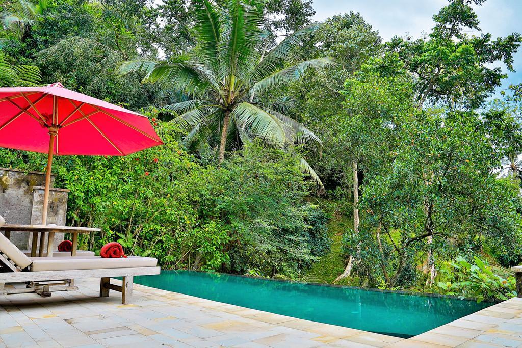 Ayung Resort, Убуд, Индонезия, фотографии туров