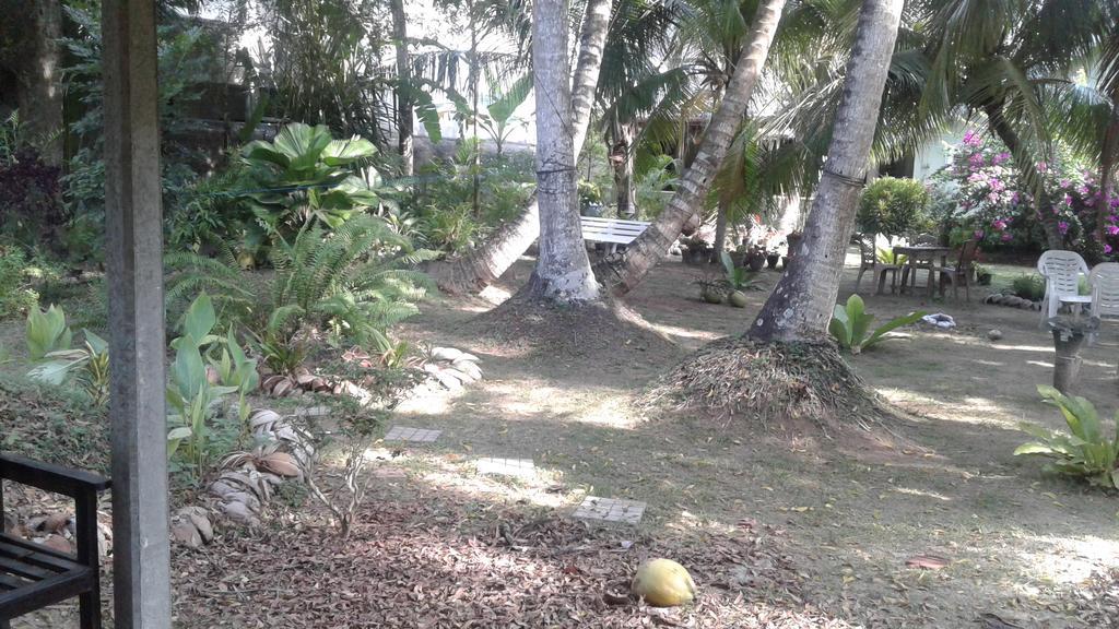 Club Mirissa, Мирисса, Шри-Ланка, фотографии туров