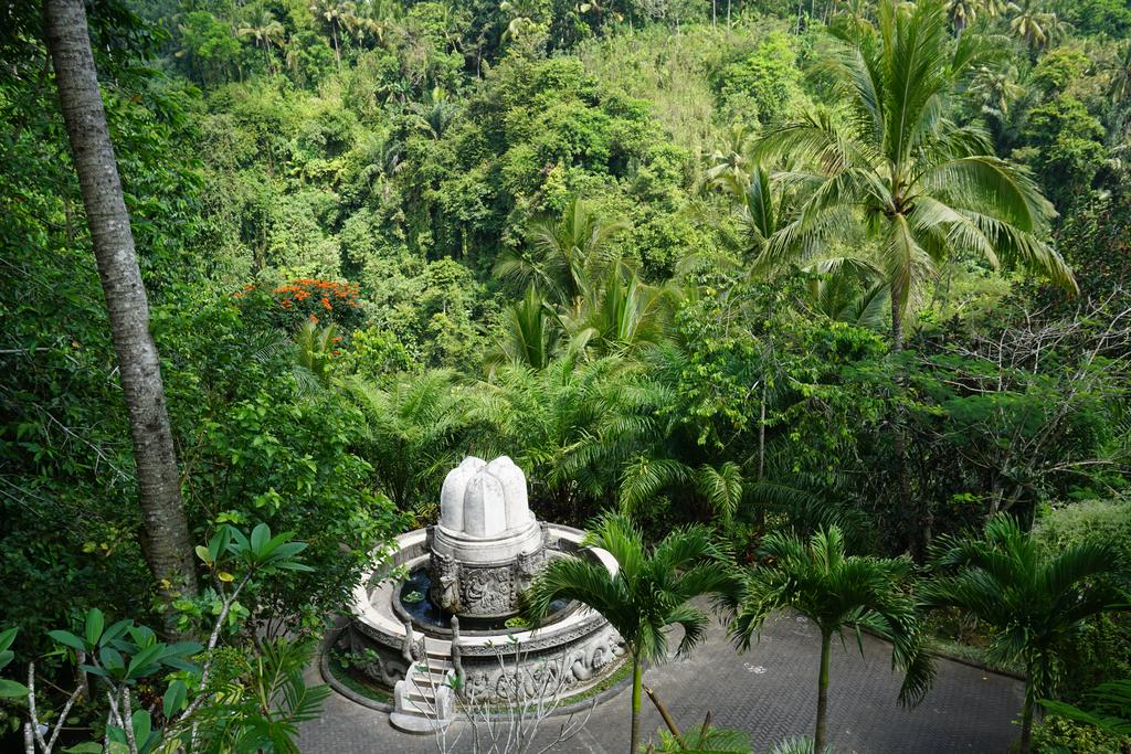 Убуд, Ayung Resort, 5