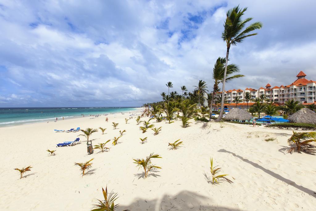 Отзывы гостей отеля Occidental Caribe (Ex. Barcelo Punta Cana)