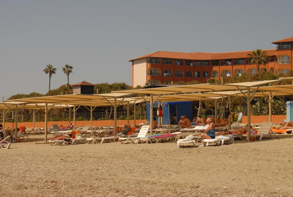 Аланья Club Turtas Beach Hotel цены