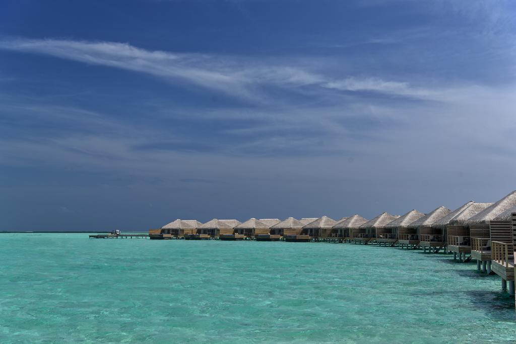 Cocoon Maldives, фотографії