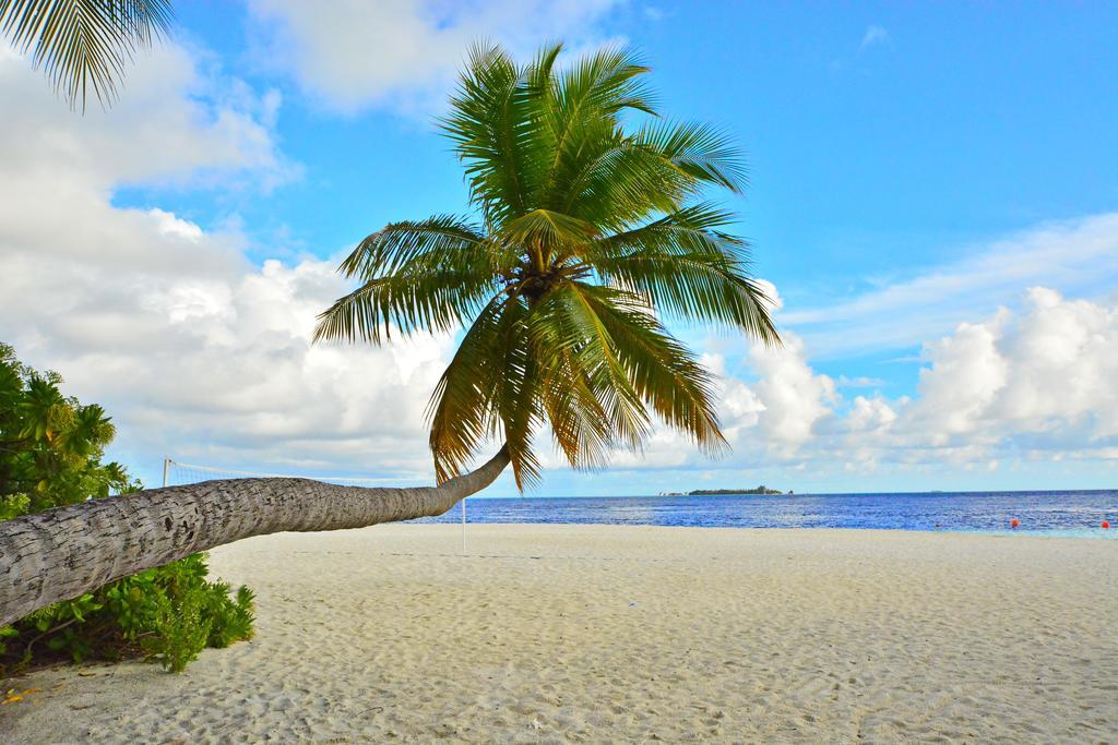 Fihalhohi Island Resort, Мальдивы, Южный Мале Атолл