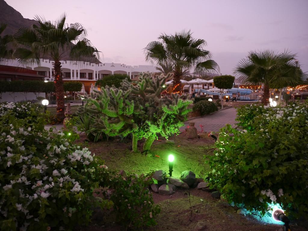 Горящие туры в отель Happy Life Village Dahab Дахаб Египет