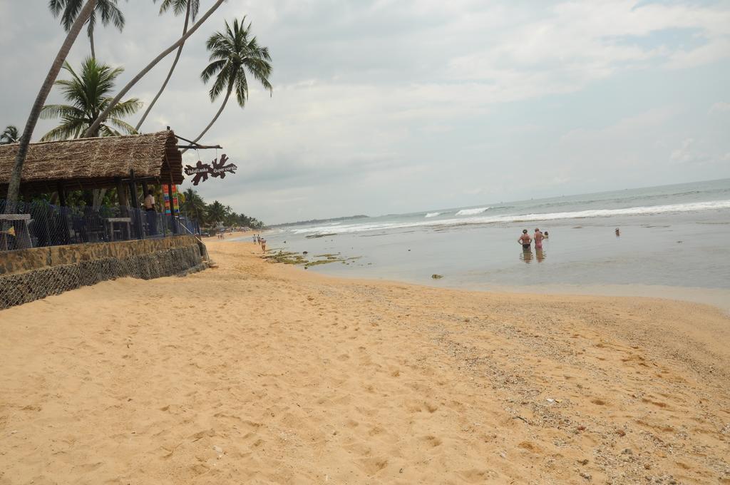 Lanka Super Coral, Хиккадува, фотографии туров
