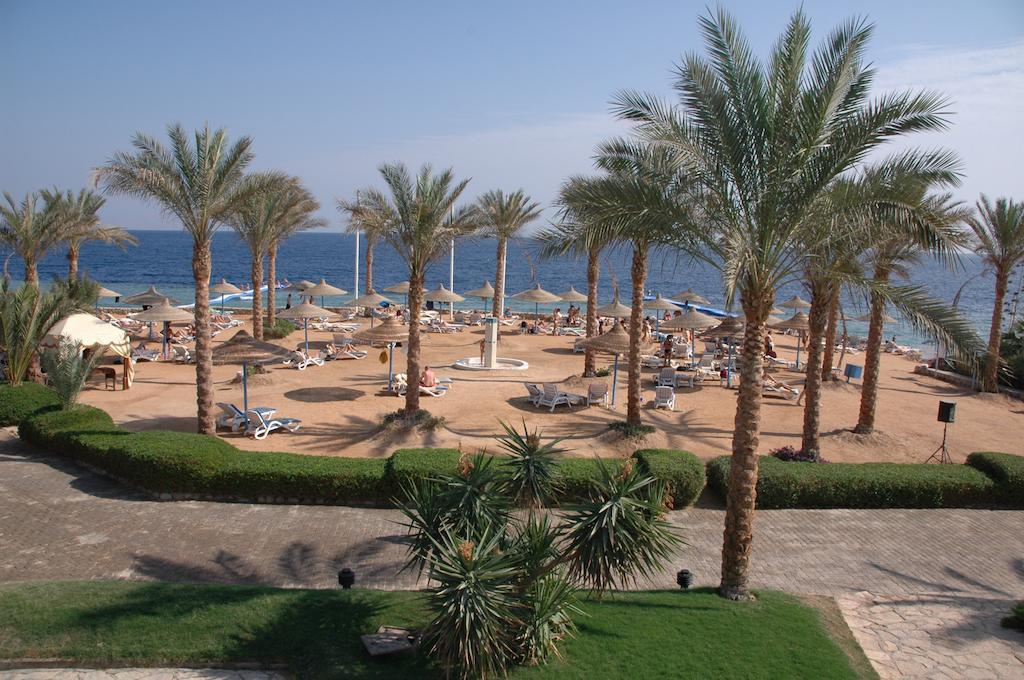 Veraclub Queen Sharm, фотографии